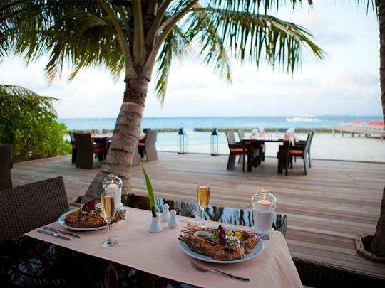 Restaurant Island Barbeque