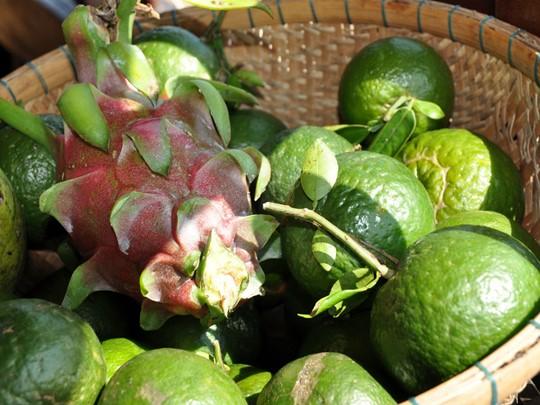 Des fruits locaux sur les étales des marchés