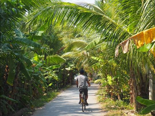 Partez en ballade sur un vélo, pour y découvrir cette nature somptueuse