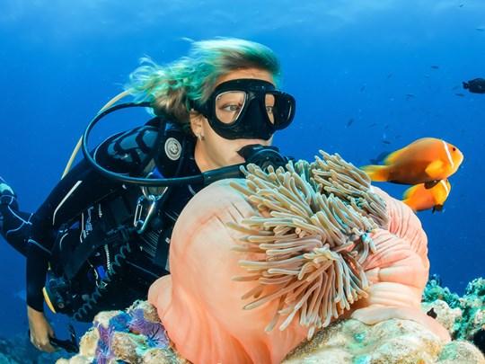 La flore subaquatique de Bali