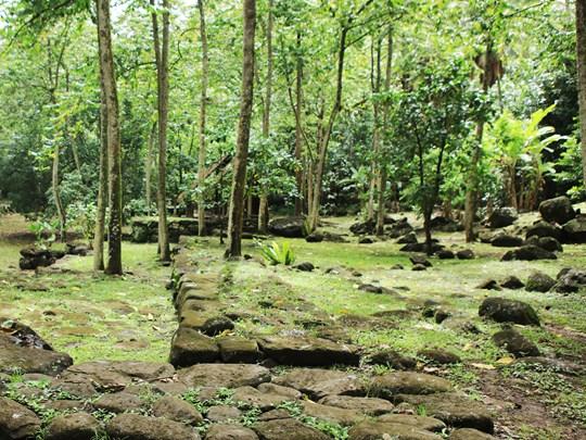 Découvrez les richesses naturelles et culturelles de l'île