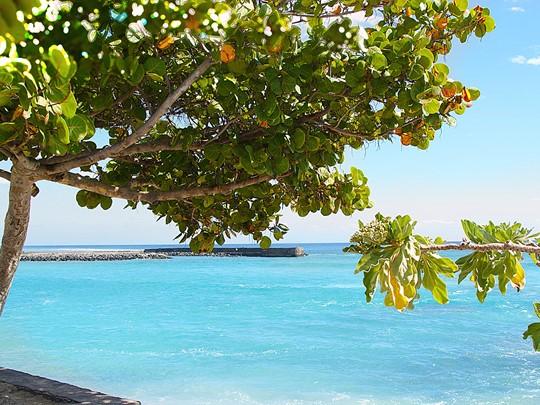 Prenez le temps de vous reposer au bord de la plage et profitez de l'eau cristalline