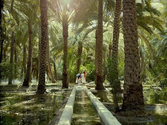 Découvrez l'oasis d'Al Aïn