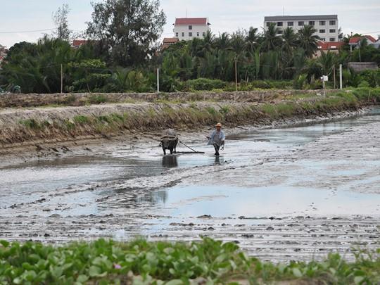 Visitezla petite ville de Hoi An, classée au patrimoine mondial de l'UNESC