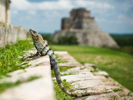 Découvrez le charme de la région du Yucatan