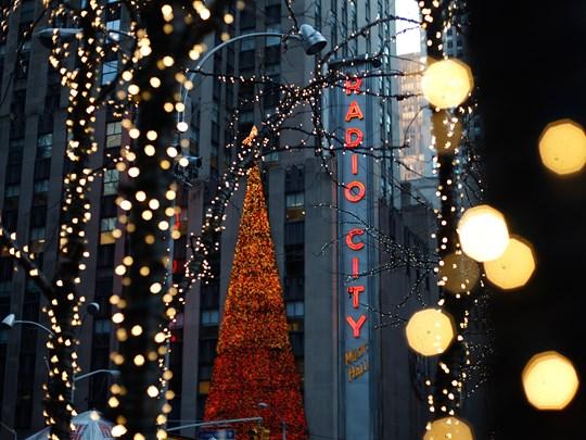 Durant votre séjour vous découvrirez New York serti de ses plus belles décorations