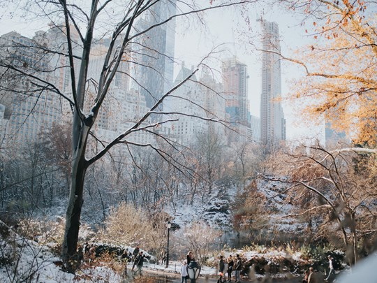 Central Park vous offrira un spectacle unique si vous avez la chance de le voir vêtu de son manteau blanc