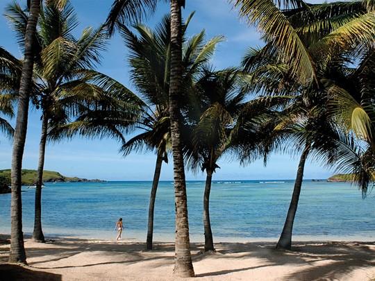 La plage de Grand-Cul-de-Sac de l'hôtel Le Sereno