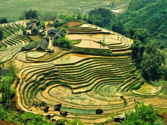 Découverte du village de Ta Van de la minorité Giay au Vietnam