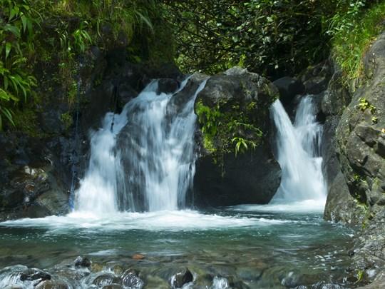 Explorez l'île pour découvrir ses merveilles naturelles