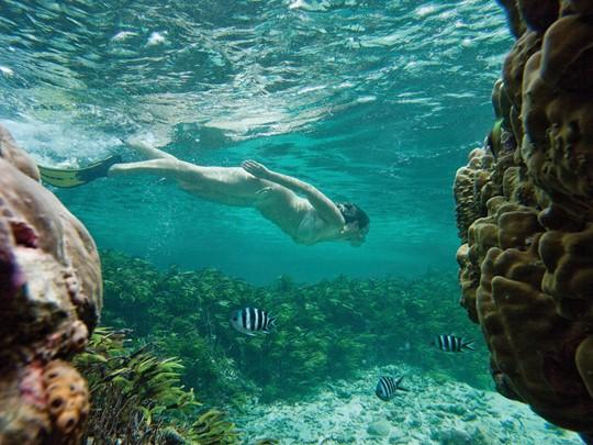 Les amateurs de plongée et de snorkeling profiteront de leur séjour à Mahé pour découvrir la richesse des fonds marins de l'île