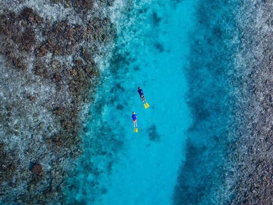 Découvrez la nature exubérante de l'île