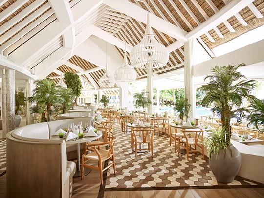 Expériences culinaires variées au restaurant Palm Court