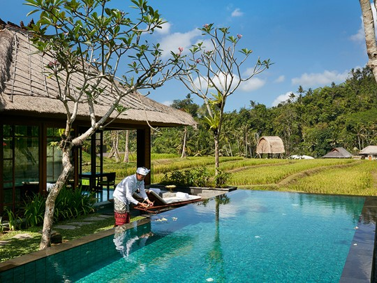 One Bedroom Rice Terrace Pool Villa