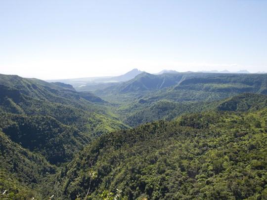 Les paysages verdoyants de Rivière Noire