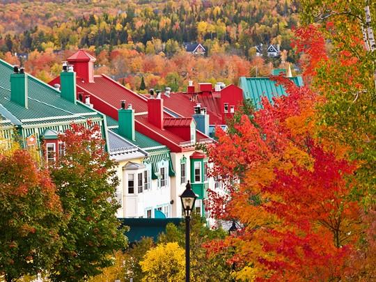 Imprégnez-vous un peu plus de l'environnement luxuriant de l'Est canadien en découvrant le charmant village de Mont-Tremblant.