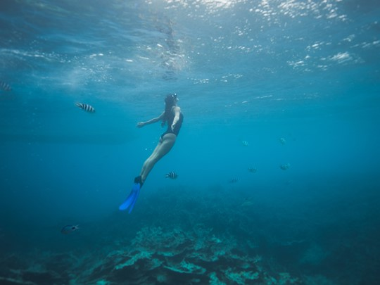 Explorez les exceptionnels fonds marins de Belle Mare
