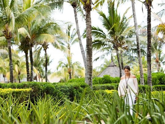 Balade dans les jardins luxuriants