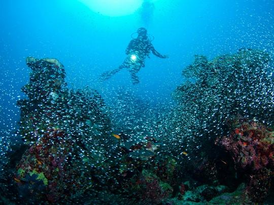 Explorez les fonds marins de l'île d'Hadahaa