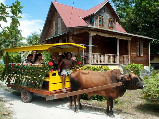 Char à boeufs traditionnel, autrefois moyen de locomotion principal et toujours utilisé par les locaux à l'occasion des grandes célébrations