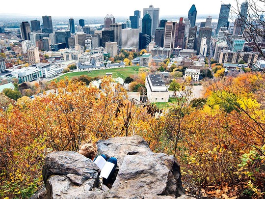 Rejoignez le Mont Royal et admirez la vue sur la ville