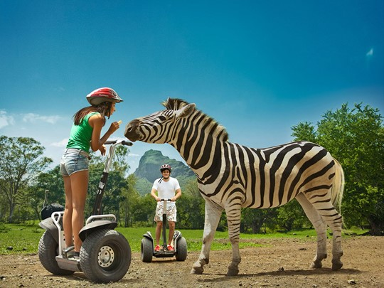 Explorez le parc Casela World of Adventures à la découverte de la nature et de moments d'aventure