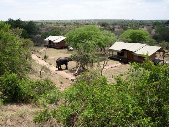 Migration Camp
