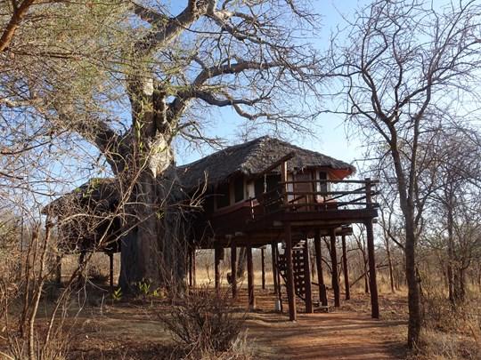 Le lodge au Tarangire Treetop