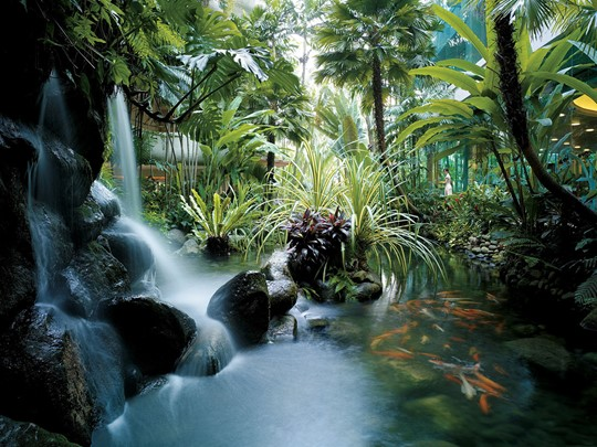 Le Shangri La est situé au coeur d'un magnifique jardin tropical