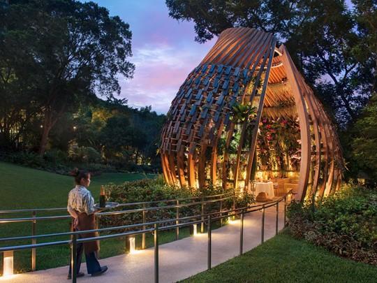 Profitez d'un somptueux dîner dans le jardin d'orchidées du Shangri La