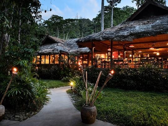 Un hôtel dépaysant, au coeur d'une forêt tropicale