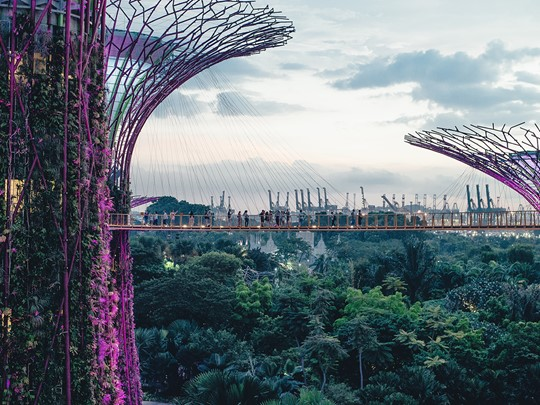Explorez les Gardens By The Bay