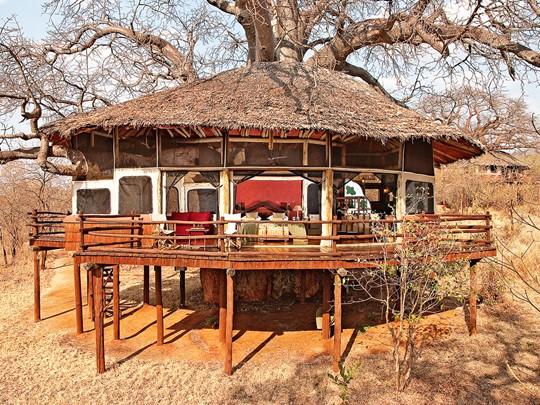 Tarangire TreeTops en Tanzanie
