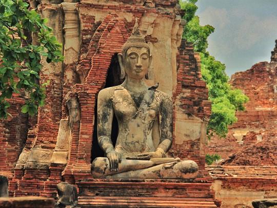 Le Wat Mahathat à Ayutthaya