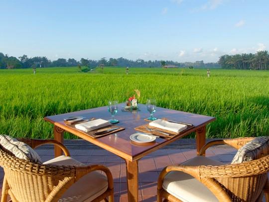 Savourez un repas face aux rizières