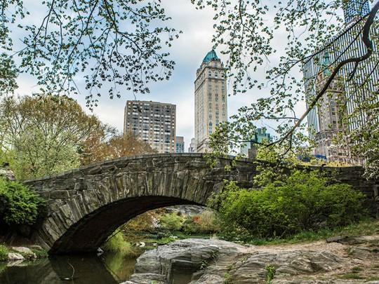 Vue du The Pierre depuis Central Park