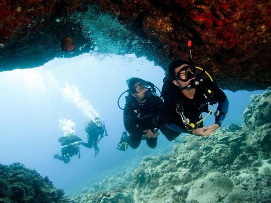 Plongez dans les fonds marins