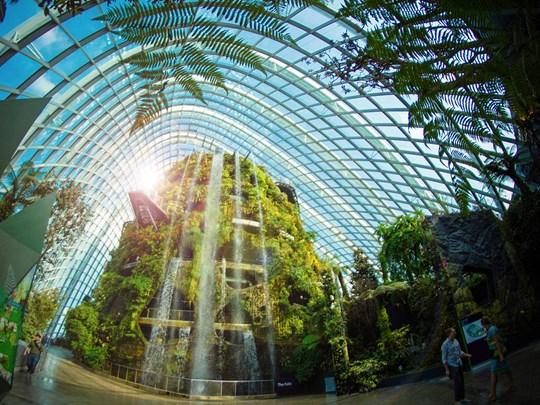 Le Cloud Forest, en intérieur, est un petit bijou écologique et reproduit différents éco systèmes