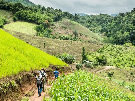 Randonnée dans un village Akha