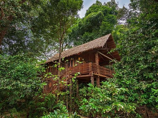 Treetop Villas