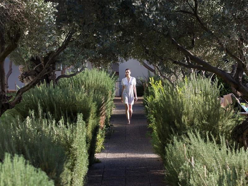 Promenade dans le jardin