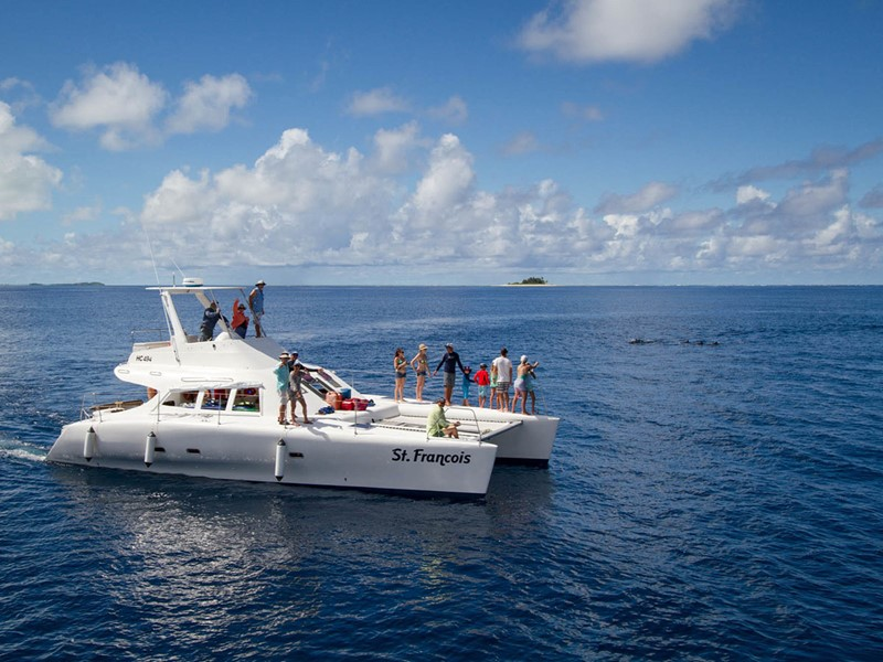 Croisière à la rencontre des dauphins à l'hôtel Alphonse Island