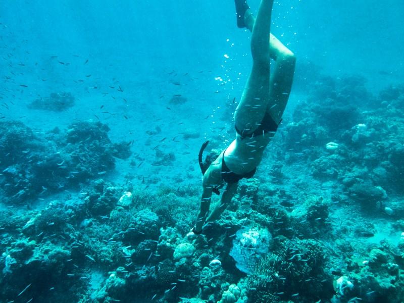 Le paradis des amateurs de plongée