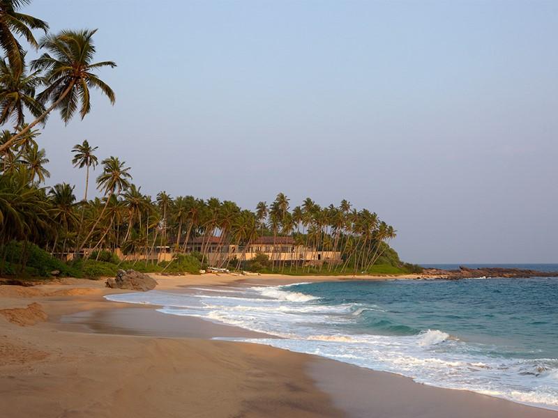 La plage de sable doré de l'Amanwella au Sri Lanka