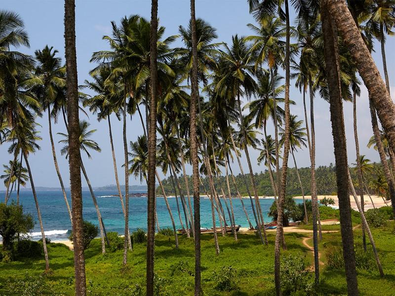 Vue de la plage de Wella au Sri Lanka