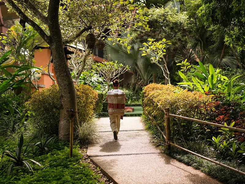 Le jardin verdoyant de l'Anantara Golden Triangle