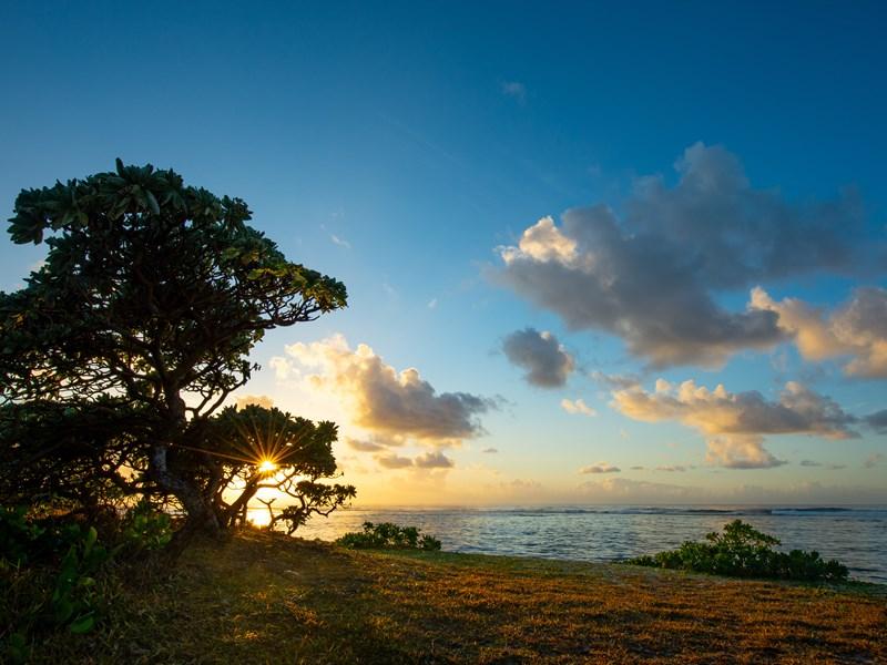 Contemplez un magnifique coucher de soleil