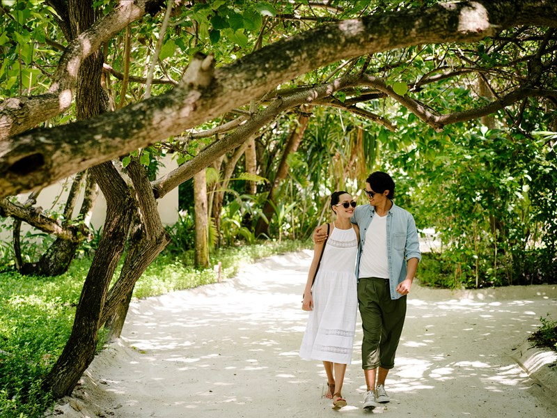 Balade au coeur de l'îlot verdoyant