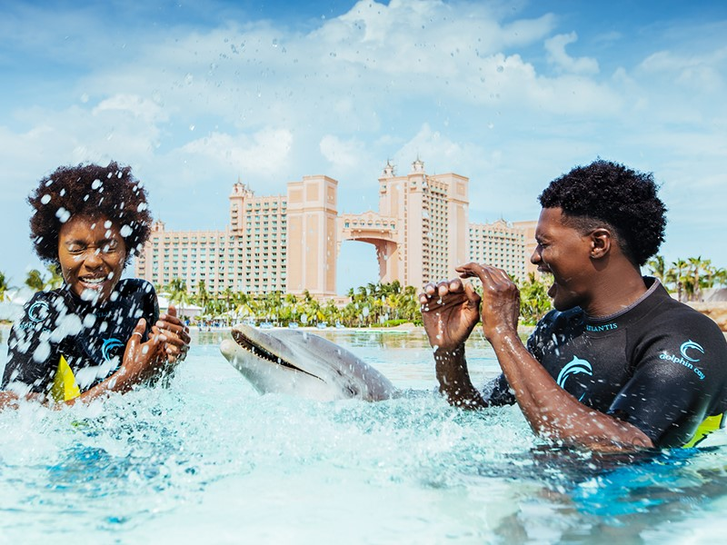Rencontre unique avec les dauphins à l'Atlantis