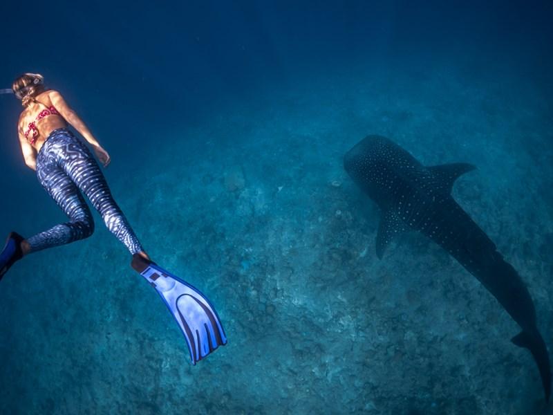 Séjour à l'Atoll de Faafu